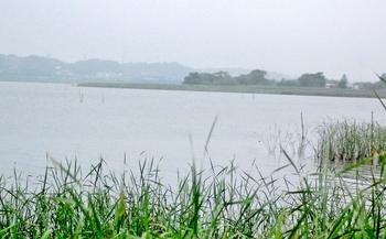 水生公園南側ヨシハラ DSC_0010 (700x435).jpg